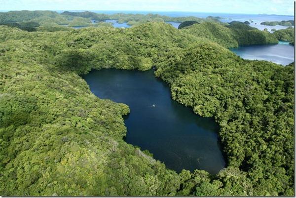 Медузное озеро