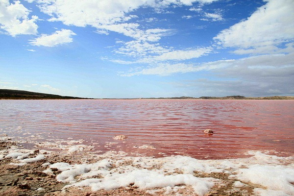 Розовое озеро Хиллер